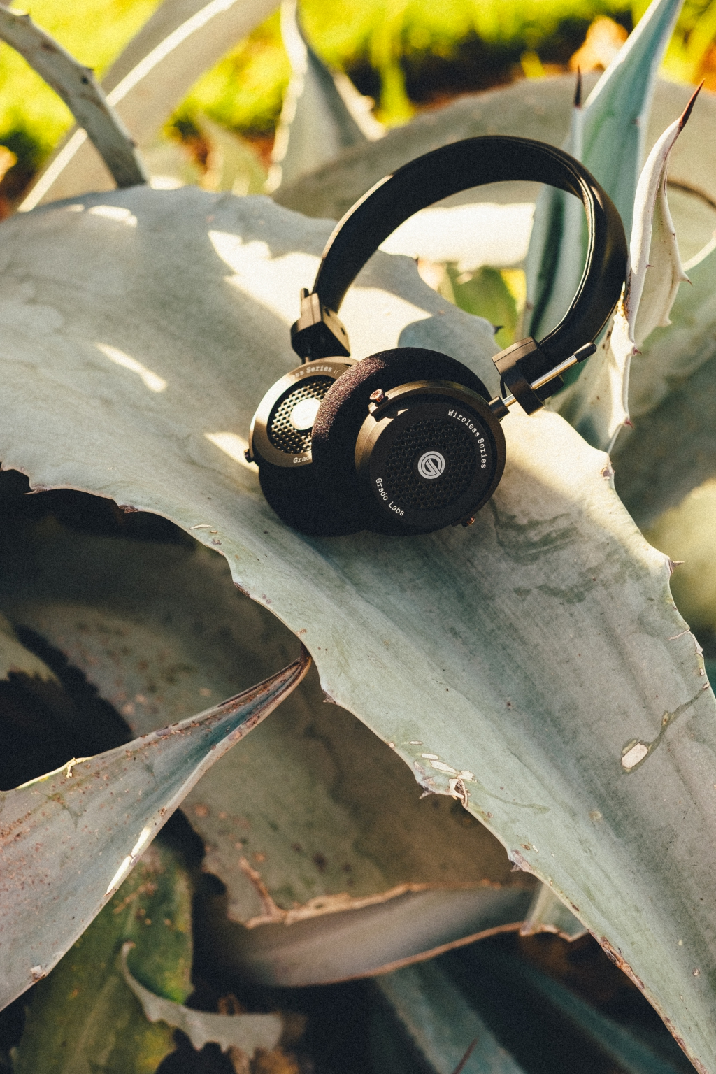 grado, grado labs, grado headphones, sunset park, brooklyn, brooklyn headphone company, three generations of sound, GW100, wireless, bluetooth, leaves, palm trees, agave, green, coast, island