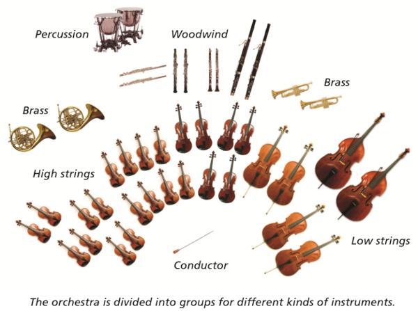 yr5msc_orchestra-600
